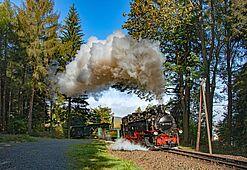 Herbststimmung mit der Fichtelbergbahn