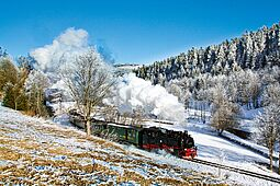 leicht bedeckte Wiesen, vereister Wald und viel Dampf der Fichtelbergbahn