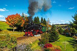 Fichtelbergbahn dampft durch den bunten Blätterwald