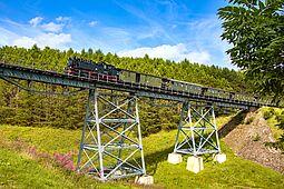 Dampfzug auf einer Stahlgitterbrücke